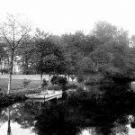 098 Alderman Canal (further upstream)