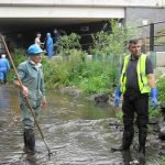 August 2011 Working with the Pickerel Project