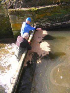 March 2017 Resealng stop planks at Baylham