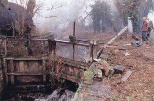 002 IWA in 1995